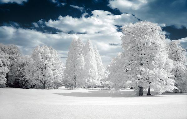 image d'hiver